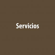 servicios-doctor-estivill